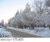 Купить «Зимние зарисовки», фото № 175851, снято 10 января 2008 г. (c) Cавельева Елена / Фотобанк Лори