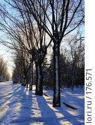 Купить «Зимняя аллея Winter alley», фото № 176571, снято 12 января 2008 г. (c) Илья Малышев / Фотобанк Лори