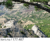 Купить «Вид на низлежащие скалы с вершины горы Эчки-Даг в Крыму», фото № 177487, снято 27 августа 2007 г. (c) Татьяна Высоцких / Фотобанк Лори