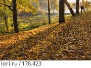 Купить «Осень в Павловске», эксклюзивное фото № 178423, снято 30 сентября 2007 г. (c) Александр Алексеев / Фотобанк Лори