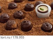 Купить «Шоколадные конфеты в какао-порошке», фото № 178955, снято 19 апреля 2007 г. (c) Ольга С. / Фотобанк Лори
