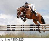 Купить «Всадница прыгает через препятствие - стилизация фотографии под масляную живопись», иллюстрация № 180223 (c) Абрамова Ксения / Фотобанк Лори
