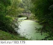 Купить «Уголок в парке», фото № 183179, снято 21 августа 2006 г. (c) Кондратенко Юлия / Фотобанк Лори