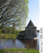 Купить «Псков, Кремль», фото № 186443, снято 7 мая 2007 г. (c) ИВА Афонская / Фотобанк Лори