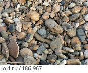 Купить «Камни на морском берегу», фото № 186967, снято 31 мая 2006 г. (c) Елизавета Калбасова / Фотобанк Лори