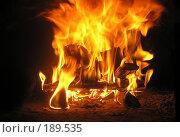 Купить «Пламя», фото № 189535, снято 20 августа 2006 г. (c) Dmitriy Andrushchenko / Фотобанк Лори