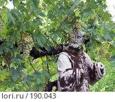Купить «Древняя статуя, окутанная виноградной лозой», фото № 190043, снято 4 августа 2006 г. (c) Лебедева Александра / Фотобанк Лори