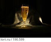 Купить «Бокал шампанского», фото № 190599, снято 9 ноября 2007 г. (c) Бушева Анастасия / Фотобанк Лори