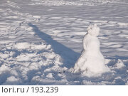 Купить «Снеговик, отбрасывающий тень», фото № 193239, снято 2 февраля 2008 г. (c) Елена Прокопова / Фотобанк Лори