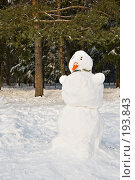 Купить «Фигура Снеговика», фото № 193843, снято 4 февраля 2008 г. (c) Светлана Силецкая / Фотобанк Лори