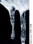 Купить «Ледяная фантазия», фото № 195199, снято 5 февраля 2008 г. (c) Брыков Дмитрий / Фотобанк Лори