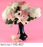 Купить «Букет из лилий и гортензии», фото № 195407, снято 11 июля 2007 г. (c) Елена Блохина / Фотобанк Лори