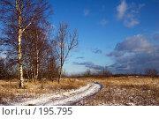Купить «Зимний пейзаж с проселочной дорогой», фото № 195795, снято 3 февраля 2008 г. (c) Игорь Соколов / Фотобанк Лори