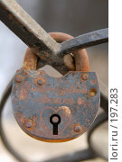 Купить «Замок на решетке», фото № 197283, снято 2 февраля 2008 г. (c) Елена Прокопова / Фотобанк Лори