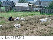 Купить «Уборка картофеля», фото № 197643, снято 26 августа 2007 г. (c) Юрий Синицын / Фотобанк Лори