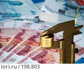 Купить «Копейка рубль бережет», эксклюзивное фото № 198803, снято 18 декабря 2007 г. (c) Алина Голышева / Фотобанк Лори