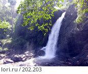 Купить «Водопад», фото № 202203, снято 16 ноября 2005 г. (c) Марина Бандуркина / Фотобанк Лори