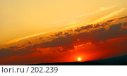 Купить «Неповторимые краски заката», фото № 202239, снято 24 августа 2007 г. (c) Анатолий Теребенин / Фотобанк Лори