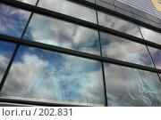 Купить «Супервысокомерие», фото № 202831, снято 10 августа 2007 г. (c) Беликов Вадим / Фотобанк Лори