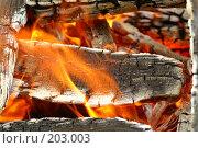 Купить «Огонь», фото № 203003, снято 24 июля 2007 г. (c) Ирина Игумнова / Фотобанк Лори