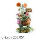 Купить «Мышь с деньгами», фото № 203051, снято 15 февраля 2008 г. (c) Муратов Андрей Анатольевич / Фотобанк Лори