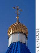Купить «Купол часовни в Тушино. Москва.», фото № 203323, снято 16 февраля 2008 г. (c) Николай Коржов / Фотобанк Лори