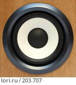 Купить «Круглый басовый динамик», фото № 203707, снято 10 февраля 2008 г. (c) Михаил Коханчиков / Фотобанк Лори