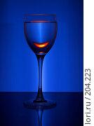 Купить «Бокал вина», фото № 204223, снято 27 апреля 2018 г. (c) Михаил Котов / Фотобанк Лори