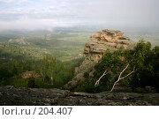Купить «Савушки Алтай», фото № 204407, снято 25 июля 2004 г. (c) Олег Кугаев / Фотобанк Лори