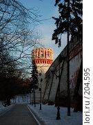 Купить «Новодевичий монастырь», эксклюзивное фото № 204595, снято 16 февраля 2008 г. (c) Alexei Tavix / Фотобанк Лори