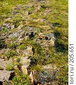 Купить «Каменная тропа», фото № 205651, снято 2 августа 2006 г. (c) Ирина Солошенко / Фотобанк Лори