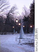 Купить «Елагин дворец. Подъездная аллея», фото № 205991, снято 16 февраля 2008 г. (c) Марина Дмитриевых / Фотобанк Лори