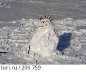 Купить «Снеговик», эксклюзивное фото № 206759, снято 3 февраля 2008 г. (c) lana1501 / Фотобанк Лори