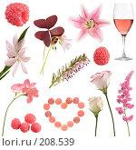 Купить «Розовая коллекция на белом фоне», фото № 208539, снято 9 октября 2018 г. (c) Tamara Kulikova / Фотобанк Лори