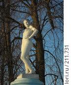 Купить «Свидетели ушедшей эпохи», фото № 211731, снято 16 февраля 2008 г. (c) Анна Финютина / Фотобанк Лори
