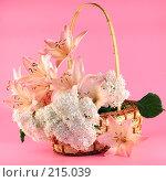 Купить «Лилии и гортензия в корзине», фото № 215039, снято 11 июля 2007 г. (c) Елена Блохина / Фотобанк Лори