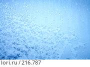 Купить «Зимний узор», фото № 216787, снято 19 сентября 2018 г. (c) ElenArt / Фотобанк Лори