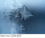 Купить «Морозный узор», фото № 216827, снято 19 сентября 2018 г. (c) ElenArt / Фотобанк Лори