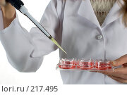 Купить «Врач в лаборатории проводит химический опыт с кровью», фото № 217495, снято 1 марта 2008 г. (c) Татьяна Белова / Фотобанк Лори