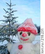 Купить «Снеговик у елки», фото № 218231, снято 14 декабря 2018 г. (c) ElenArt / Фотобанк Лори