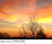 Купить «Золотой закат», фото № 218535, снято 21 января 2018 г. (c) ElenArt / Фотобанк Лори