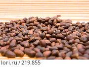 Купить «Кедровые орехи», фото № 219855, снято 29 февраля 2008 г. (c) Вадим Пономаренко / Фотобанк Лори