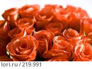 Купить «Букет красных роз в лучах солнца, резкость в центре кадра», фото № 219991, снято 14 декабря 2007 г. (c) Ольга Хорькова / Фотобанк Лори