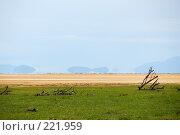 Купить «Миражи над озером Маньяра», эксклюзивное фото № 221959, снято 21 января 2008 г. (c) Знаменский Олег / Фотобанк Лори