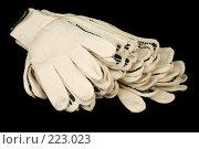 Купить «Связка рабочих перчаток», фото № 223023, снято 14 марта 2008 г. (c) Игорь Веснинов / Фотобанк Лори