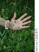 Купить «Берегите природу», фото № 223811, снято 23 июля 2005 г. (c) Вадим Лигай / Фотобанк Лори