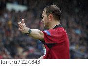Купить «Футбольный рефери», фото № 227843, снято 19 мая 2004 г. (c) Виктор Филиппович Погонцев / Фотобанк Лори