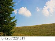 Купить «Холмистый пейзаж. Поле и облачное небо.», фото № 228311, снято 19 августа 2007 г. (c) Harry / Фотобанк Лори