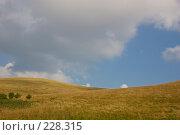 Купить «Холмистый пейзаж. Поле и облачное небо. Идеальная заставка для монитора», фото № 228315, снято 19 августа 2007 г. (c) Harry / Фотобанк Лори