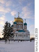 Купить «Омск. Возрожденный Успенский собор», фото № 230559, снято 8 января 2008 г. (c) Julia Nelson / Фотобанк Лори